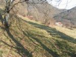 Real estate - Land, for sale, Plave, 25,00 €/m<sup>2</sup>