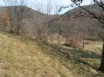 Real estate - Land, for sale, Plave, 25,00 €/m2
