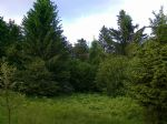 Real estate - Other offer, for sale, Otlica, 19.900,00 €
