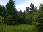 Immobiliare - Zemljišče, Kmetijsko zemljišče, vendita, Otlica, 19.900,00 €