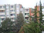Real estate - Stanovanje, Enosobno stanovanje, , Nova Gorica - Cankarjeva Ulica, 300,00 €/mesec