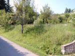 Real estate - Zemljišče, Za gradnjo stanovanjske hiše, , Volčja Draga, 50,00 €/m2