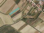 Real estate - Zemljišče, Kmetijsko zemljišče, for sale, Ozeljan, 6.000,00 €