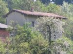 Immobiliare - Altra offerta, affittare, Srednje, 300,00 €/mesec
