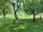 Immobiliare - Casa, vendita, Šmarje, 45.000,00 €